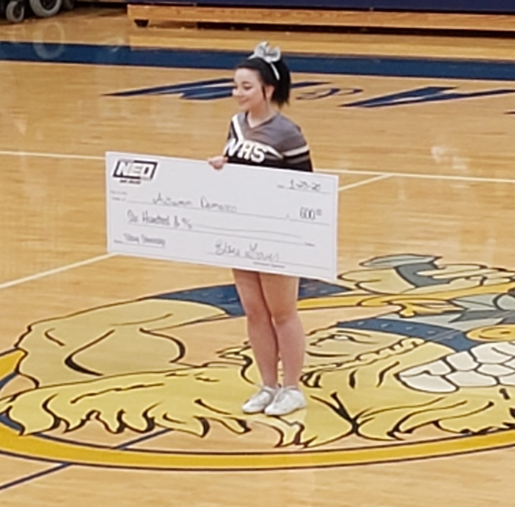 Amber DeMaro wins scholarship